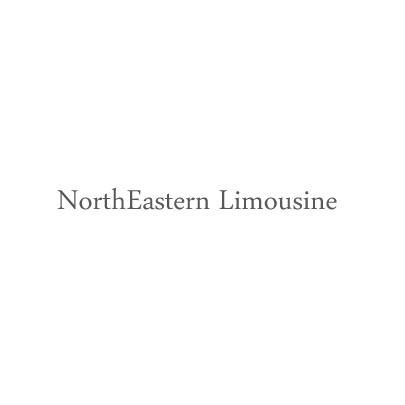 Northeastern Limousine Team