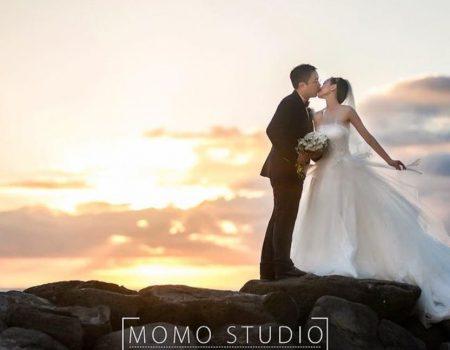 Hawaii MoMo Studio