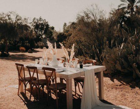 The White Saguaro