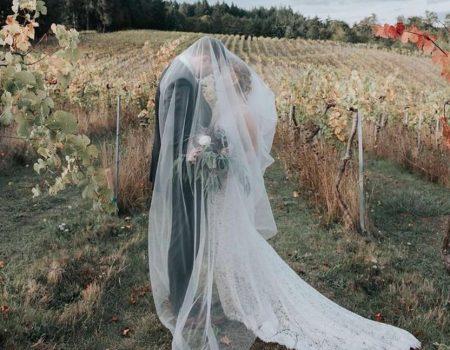 BeckenRidge Vineyard