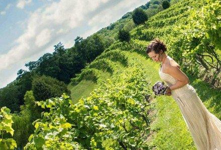 Vinberige Vineyards