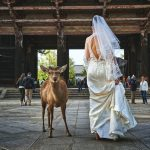 wedding venues philadelphia