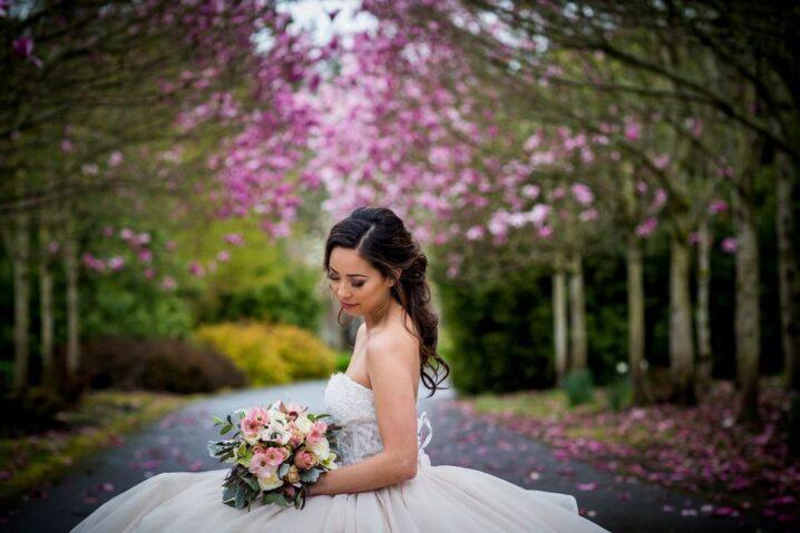 Blossom & Beauty