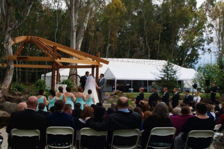 Starlight Grove Events