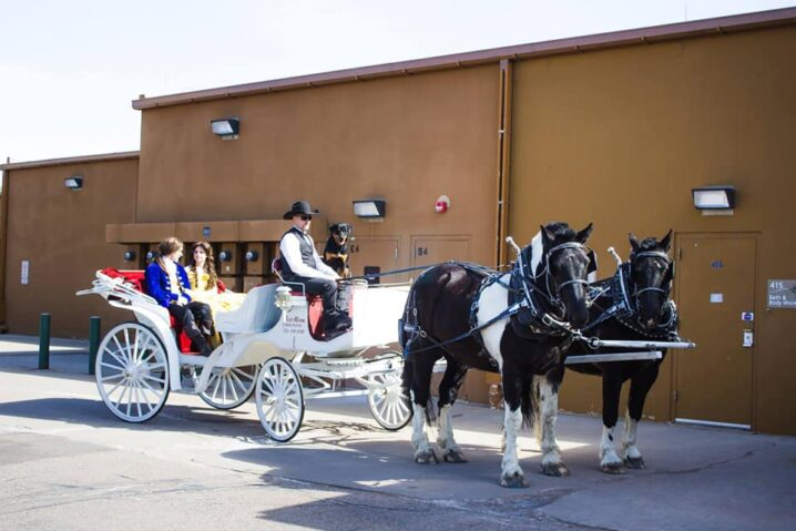 Blue Moon Carriages