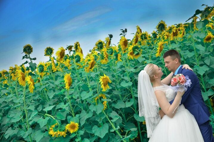 wedding djs kansas city